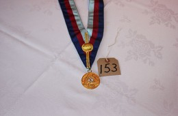 Royal Arch – Province of South Wales Eastern Div Collarette & Assistant DC Jewel